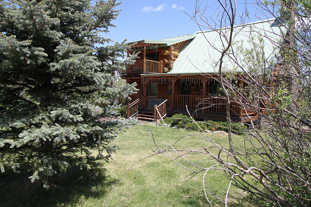 Little ponderosa cabin in greer for Cabins to rent in greer az