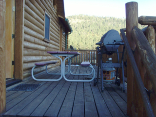 Rustic Rear Deck BBQ